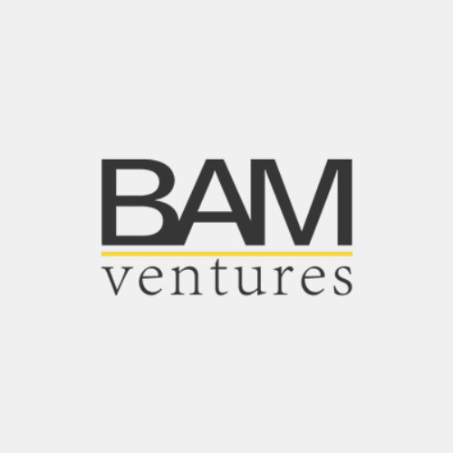 Investors bam